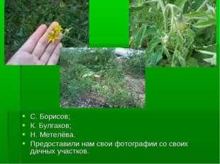 С. Борисов; К. Булгаков; Н. Метелёва. Предоставили нам свои фотографии со сво