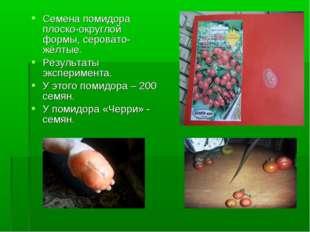 Семена помидора плоско-округлой формы, серовато-жёлтые. Результаты эксперимен