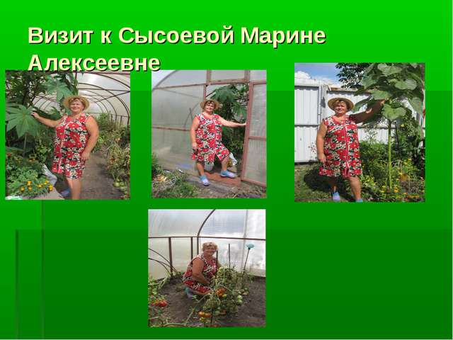 Визит к Сысоевой Марине Алексеевне
