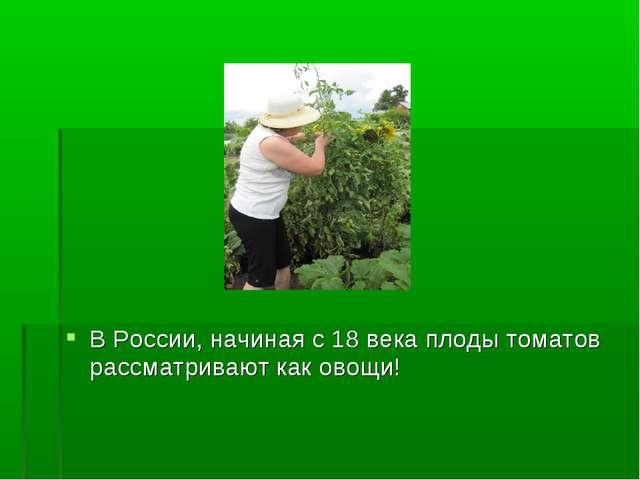 В России, начиная с 18 века плоды томатов рассматривают как овощи!