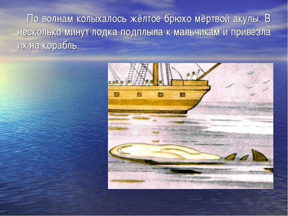 По волнам колыхалось жёлтое брюхо мёртвой акулы. В несколько минут лодка под...