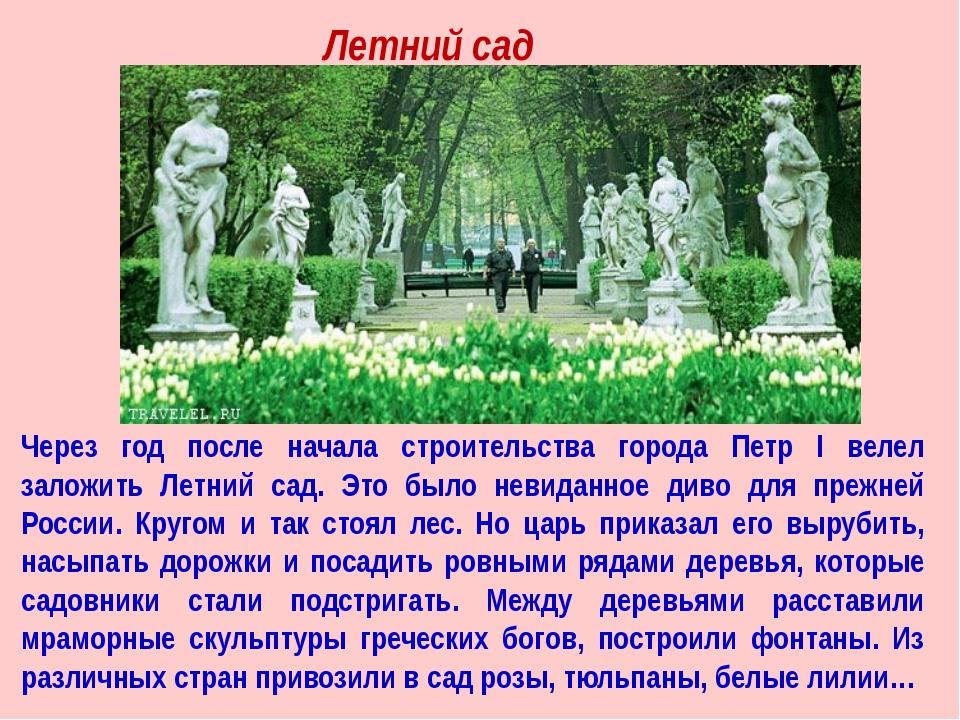 Через год после начала строительства города Петр I велел заложить Летний сад....