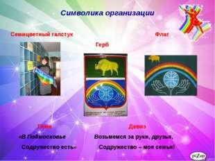 Знакомимся с «радугой» Символика организации Семицветный галстук Флаг Герб Ги