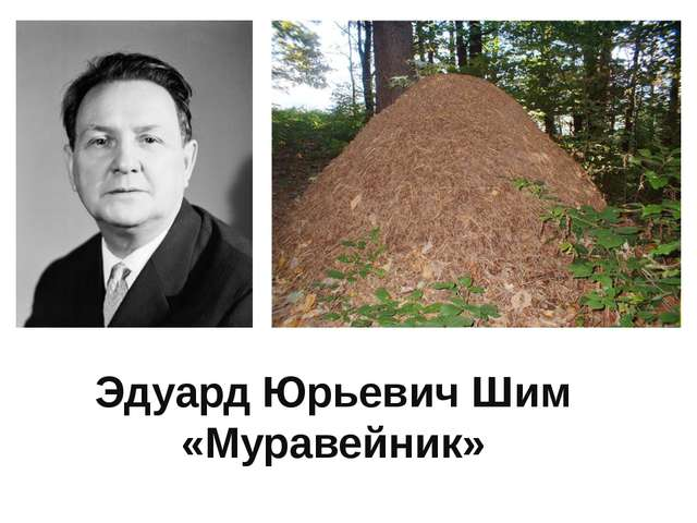 Эдуард Юрьевич Шим «Муравейник»