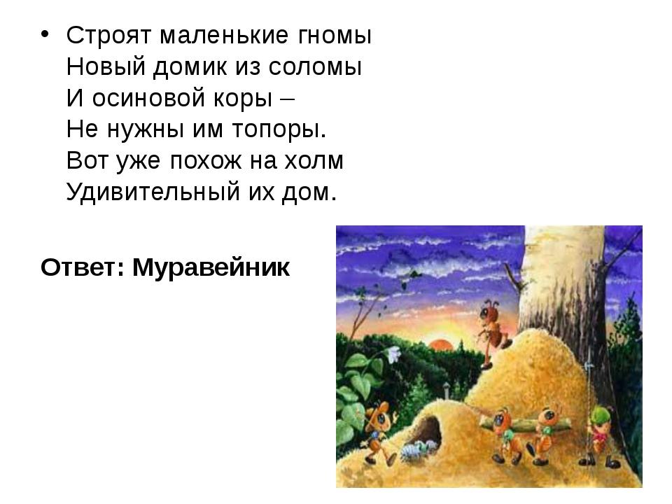 Строят маленькие гномы Новый домик из соломы И осиновой коры – Не нужны им то...