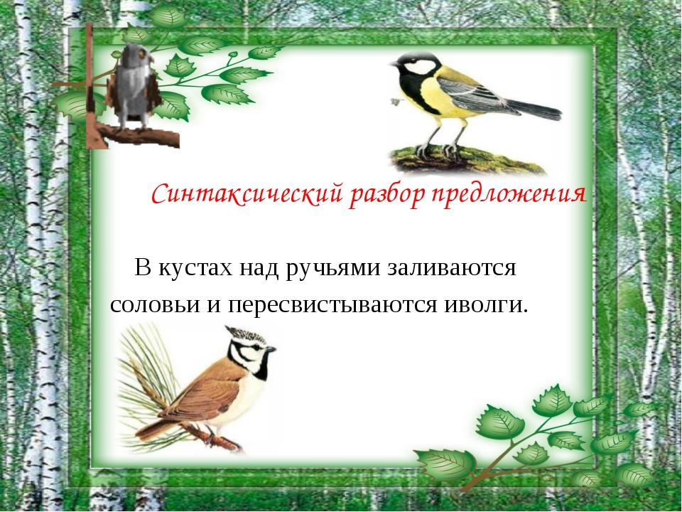 Синтаксический разбор предложения В кустах над ручьями заливаются соловьи и...