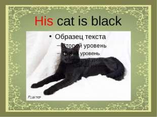 His cat is black