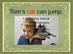 Tom's cat can jump.