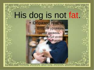 His dog is not fat.