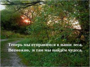 Теперь мы отправимся в наши леса. Возможно, и там мы найдём чудеса.