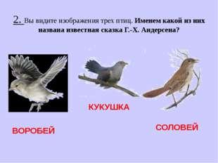 2. Вы видите изображения трех птиц. Именем какой из них названа известная ска