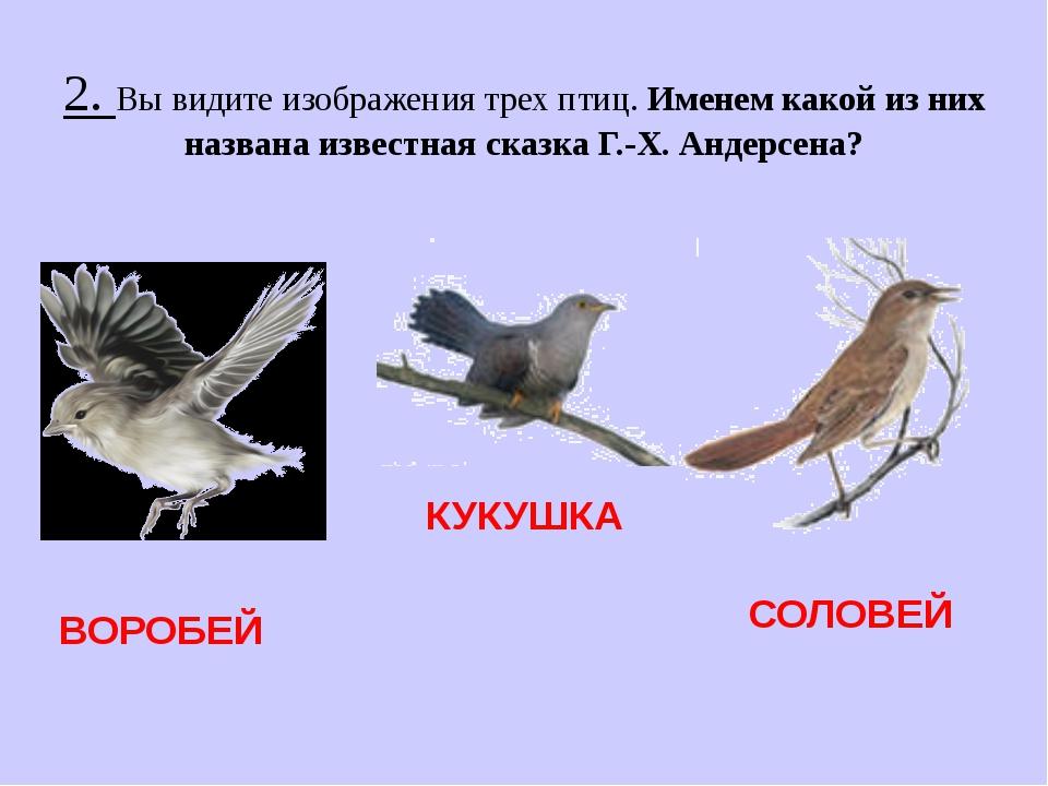2. Вы видите изображения трех птиц. Именем какой из них названа известная ска...