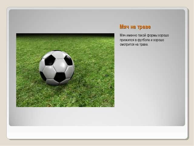Мяч на траве Мяч именно такой формы хорошо прижился в футболе и хорошо смотри...