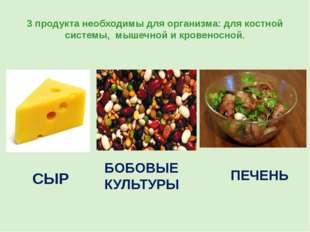 3 продукта необходимы для организма: для костной системы, мышечной и кровенос