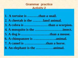 Grammar practice Activity 2 A tortoise is ……….than a snail. 2. A cheetah is t
