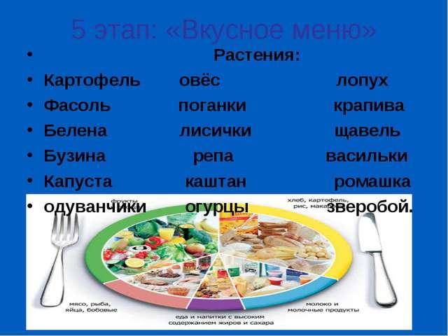 5 этап: «Вкусное меню» Растения: Картофель овёс лопух Фасоль поганки крапива...