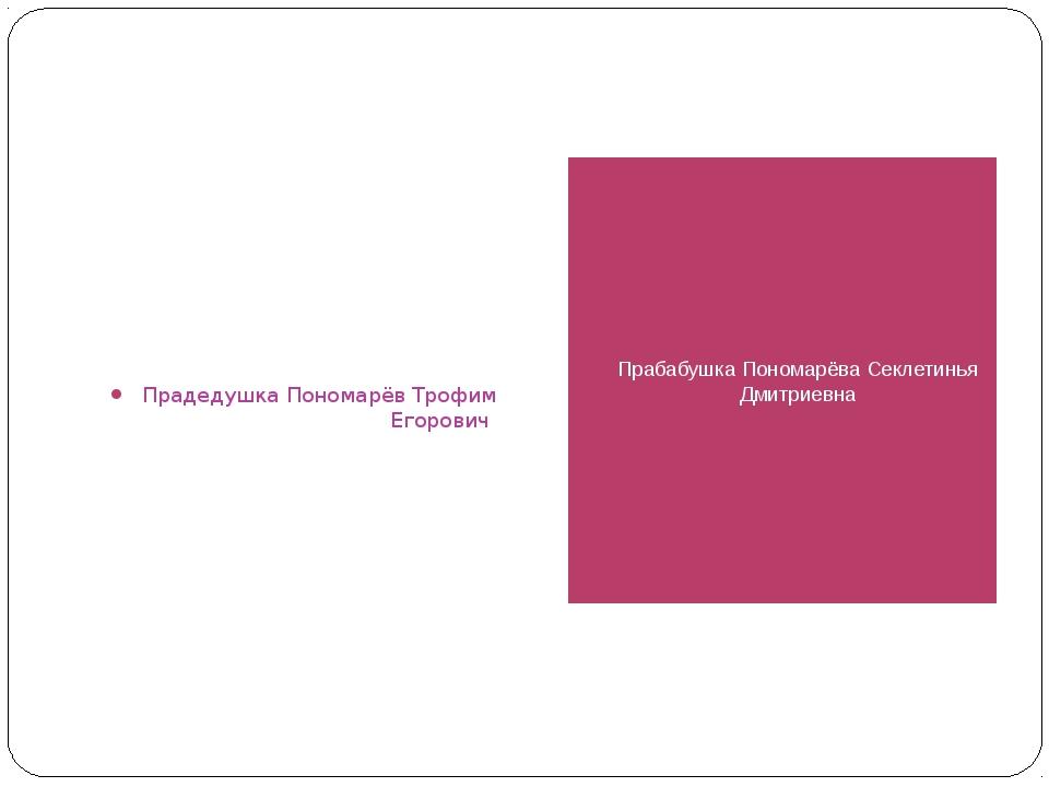 Прадедушка Пономарёв Трофим Егорович Прабабушка Пономарёва Секлетинья Дмитрие...