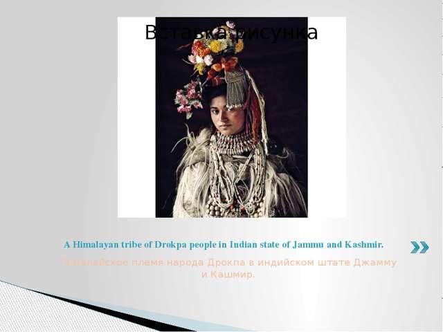 Гималайское племя народа Дрокпа в индийском штате Джамму и Кашмир. A Himalaya...