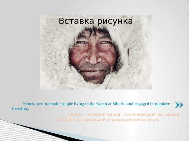 Ненцы – кочевой народ, проживающий на севере Сибири и занимающийся разведени...