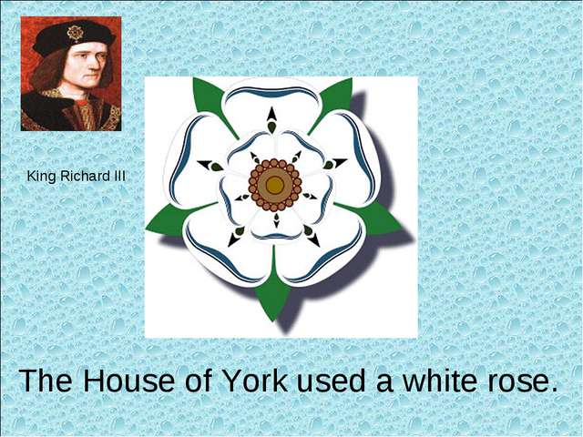 King Richard III The House of York used a white rose.