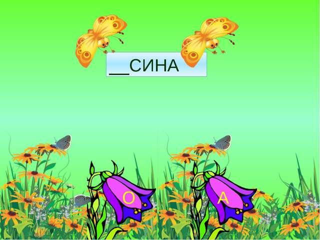 __СИНА О А