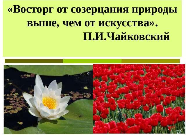«Восторг от созерцания природы выше, чем от искусства». П.И.Чайковский