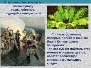 Считалось, что в ночь на Ивана Купалу травы обретают чудодейственную силу Со