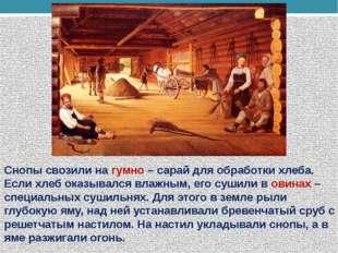 Снопы свозили на гумно – сарай для обработки хлеба. Если хлеб оказывался влаж
