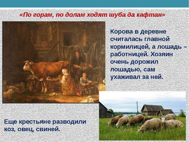 «По горам, по долам ходят шуба да кафтан» Еще крестьяне разводили коз, овец,...