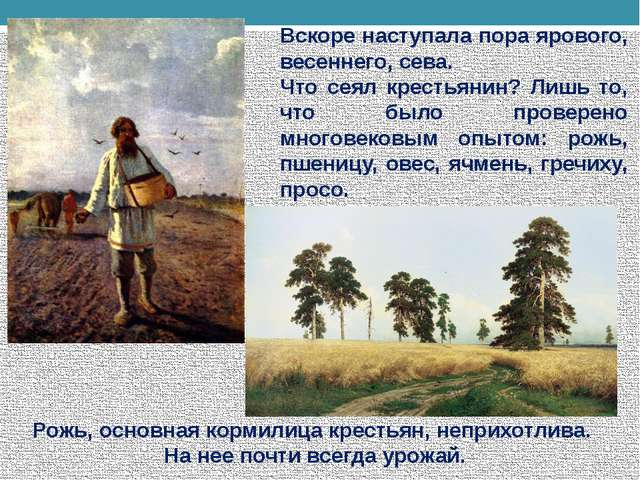 Вскоре наступала пора ярового, весеннего, сева. Что сеял крестьянин? Лишь то,...