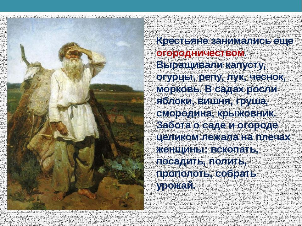 Крестьяне занимались еще огородничеством. Выращивали капусту, огурцы, репу, л...