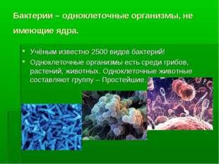 Бактерии – одноклеточные организмы, не имеющие ядра. Учёным известно 2500 вид