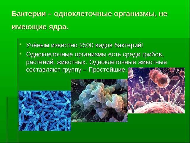 Бактерии – одноклеточные организмы, не имеющие ядра. Учёным известно 2500 вид...
