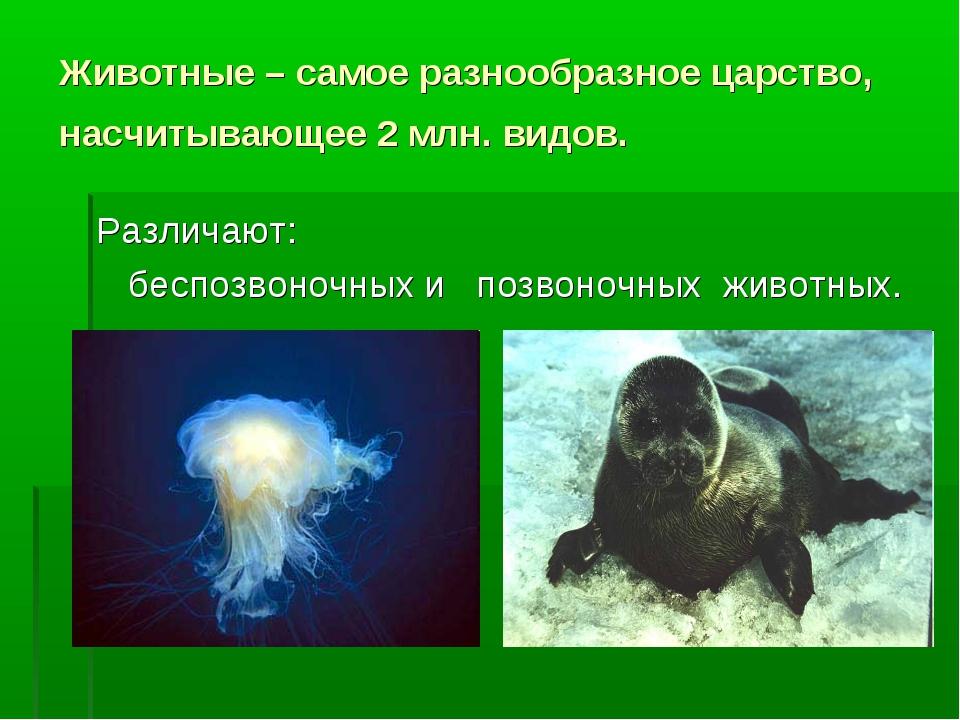 Животные – самое разнообразное царство, насчитывающее 2 млн. видов. Различают...