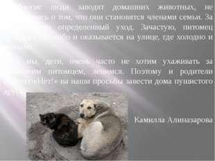 Многие люди заводят домашних животных, не задумываясь о том, что они становят