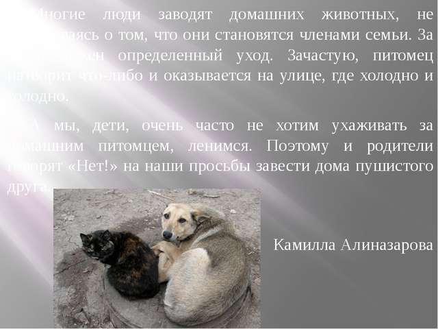 Многие люди заводят домашних животных, не задумываясь о том, что они становят...