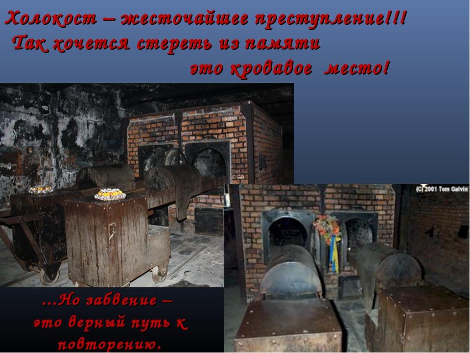 Холокост – жесточайшее преступление!!! Так хочется стереть из памяти это кров...