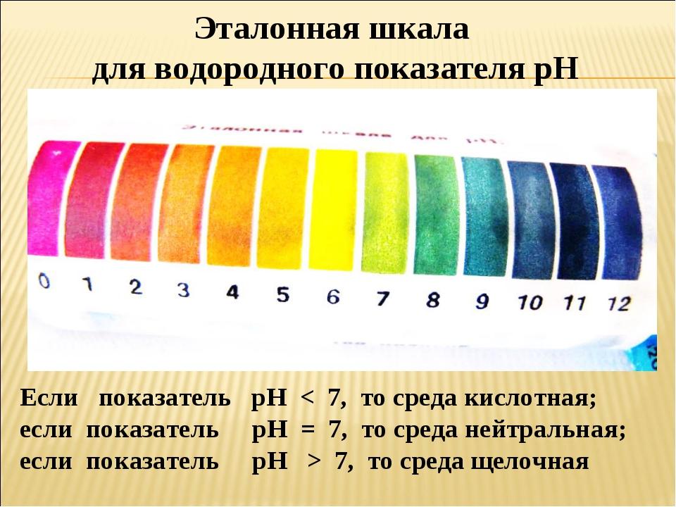 Если показатель pH < 7, то среда кислотная; если показатель pH = 7, то среда...
