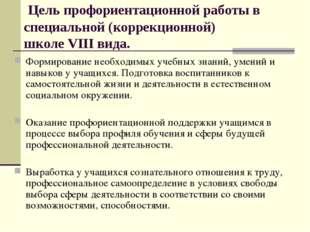 Цель профориентационной работы в специальной (коррекционной) школе VIII вида