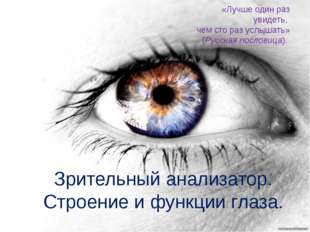 Зрительный анализатор. Строение и функции глаза. «Лучше один раз увидеть, чем