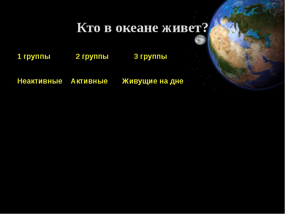 Кто в океане живет? 1 группы 2 группы 3 группы Неактивные Активные Живущие на...