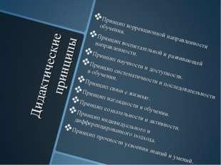 Дидактические принципы Принцип коррекционной направленности обучения. Принцип