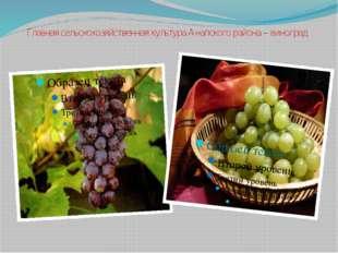 Главная сельскохозяйственная культура Анапского района – виноград.