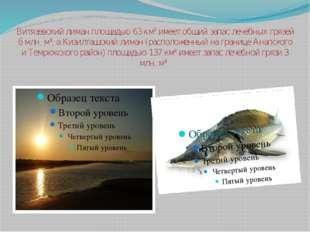 Витязевский лиман площадью 63 км² имеет общий запас лечебных грязей 6 млн. м³