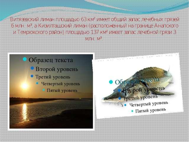 Витязевский лиман площадью 63 км² имеет общий запас лечебных грязей 6 млн. м³...