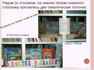 Рядом со столиком, на нижних полках книжного стеллажа притаились две тематиче