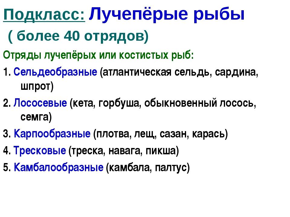Подкласс: Лучепёрые рыбы ( более 40 отрядов) Отряды лучепёрых или костистых р...