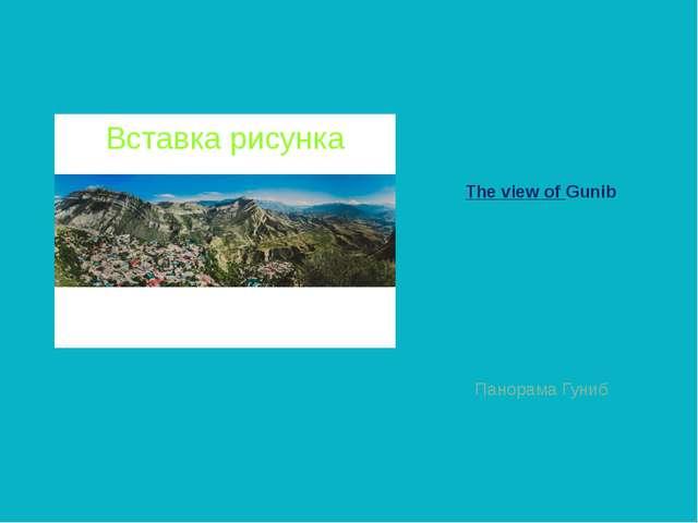 The view of Gunib Панорама Гуниб