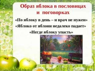 Образ яблока в пословицах и поговорках «По яблоку в день – и врач не нужен» «