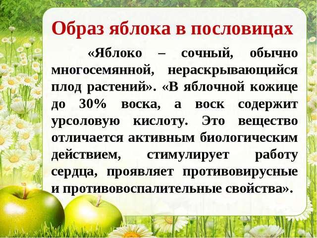 Образ яблока в пословицах «Яблоко – сочный, обычно многосемянной, нераскрываю...